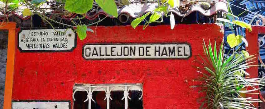 calljon de Hamel havana Cuba 5 Must Do's in Havana