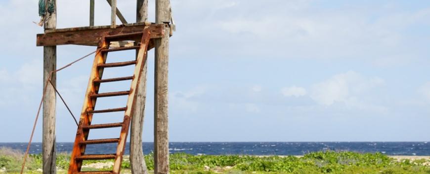 Cuba-horses-travel-10.jpg