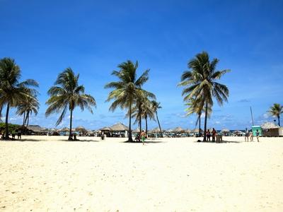 Playas Del Oeste Havana Cuba beach palm tree sun ocean sand