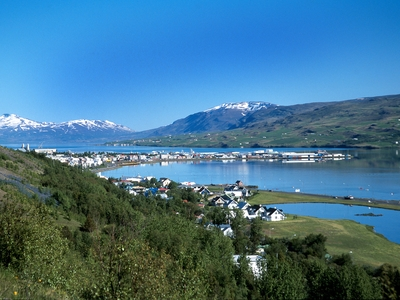 Akureyri town village Iceland summer nature travel cruise