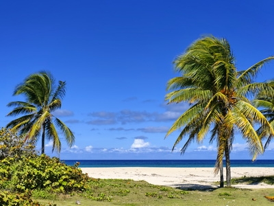 A Caribbean beach in Cuba