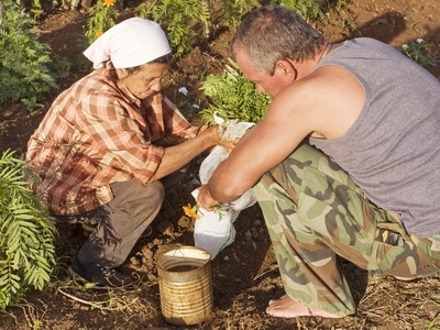 farmers las terrazas cuba