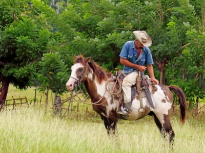 A rancher is seen in the Pinar Del Rio region in Cuba
