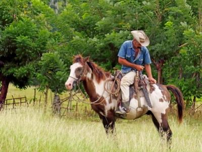 A rancher is seen in the Pinar Del Rio region in Cuba