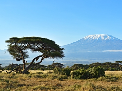 Mt Kilimanjaro Amboseli National Park Africa Safari