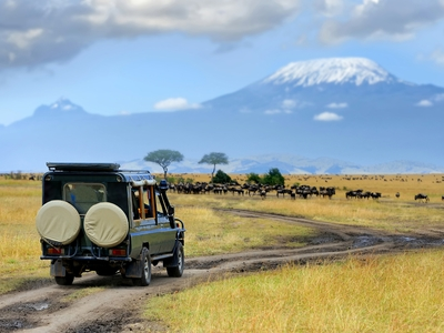 Game hunting safari jeep africa wild animals endangered species Arusha