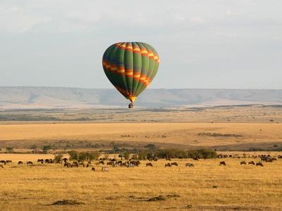 Hot air balloon over Maasai Mara Kenya Africa wild game