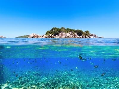 St. Pierre Island Seychelles Africa Beach snorkel water fish swim reef