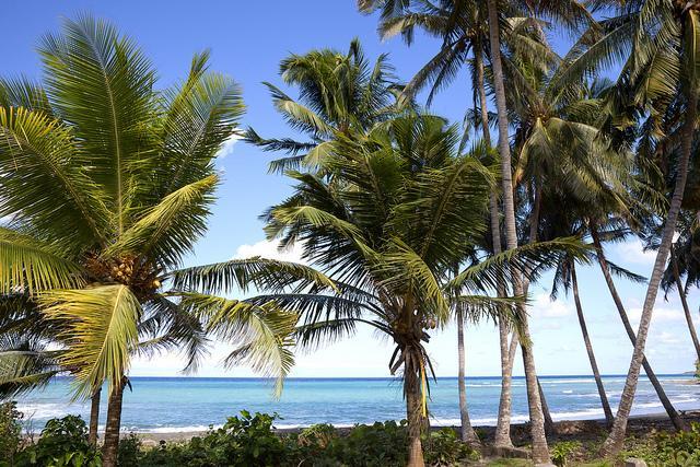 Beach-Jamal-Guantanamo-Cuba.jpg