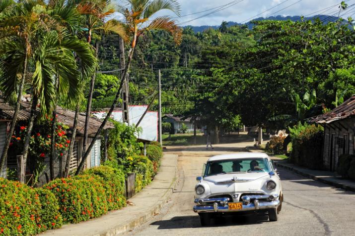 Cuba-Cars-White.jpg